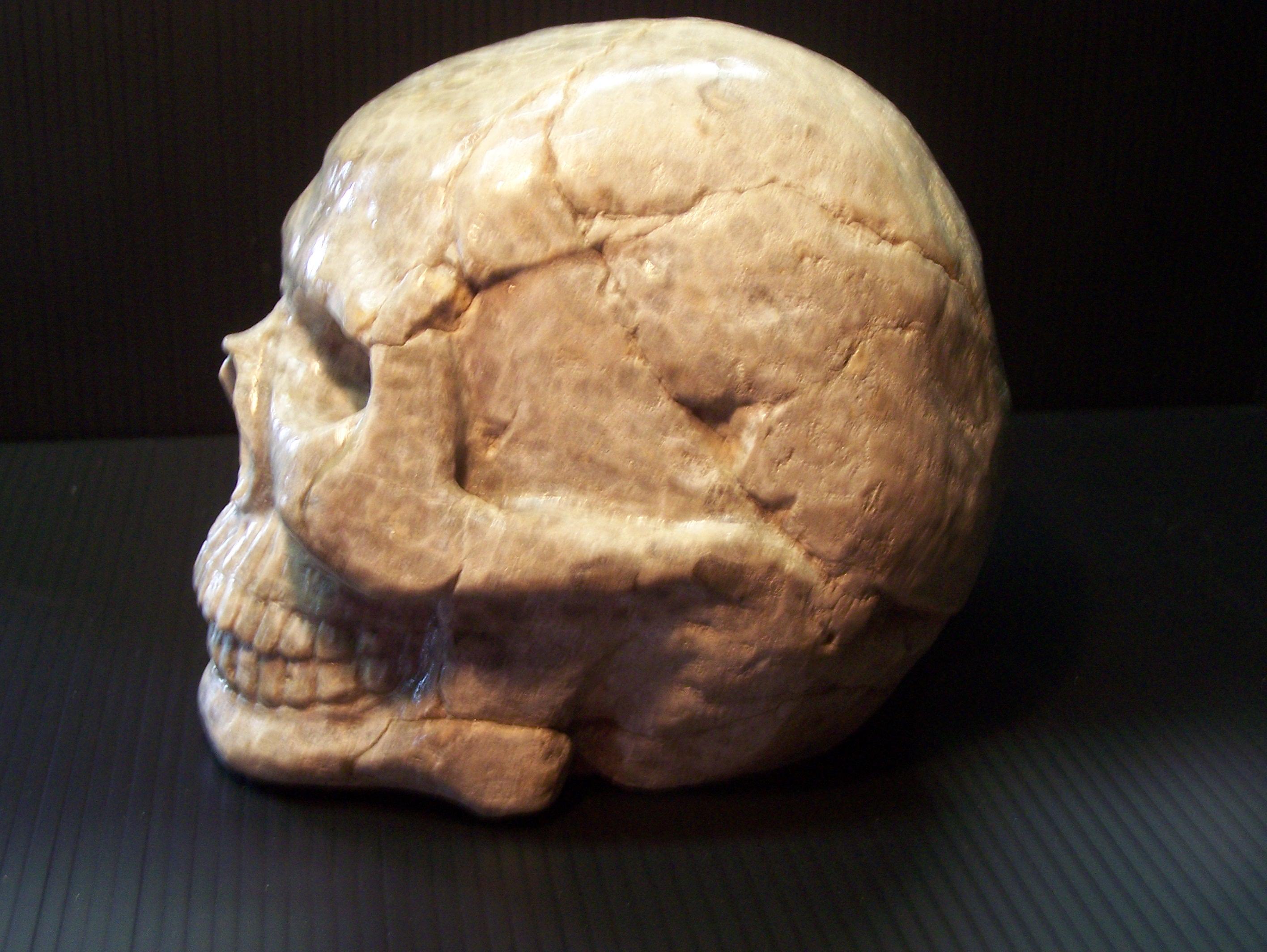 petoskey-stone-2
