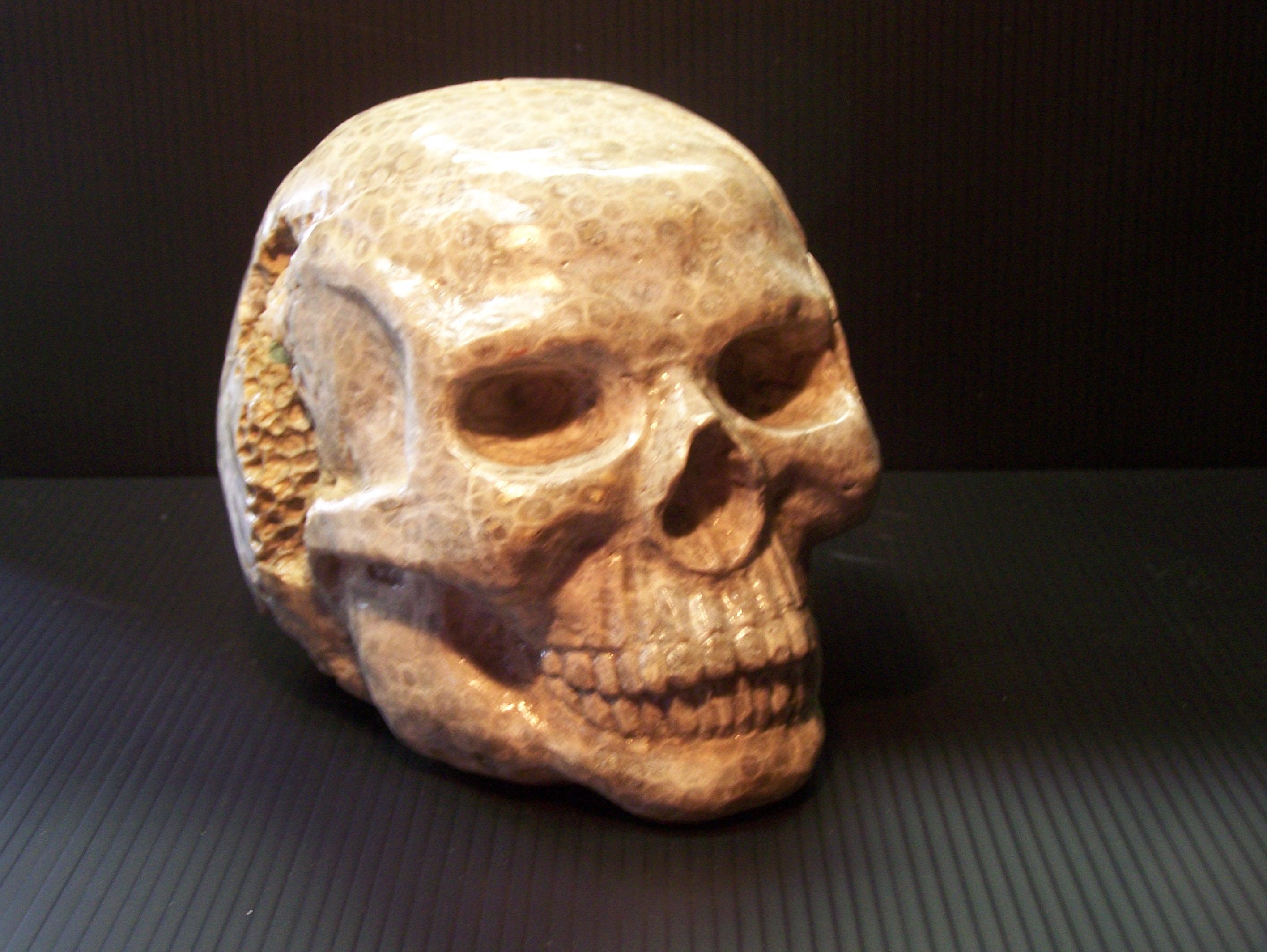 petoskey-stone-3