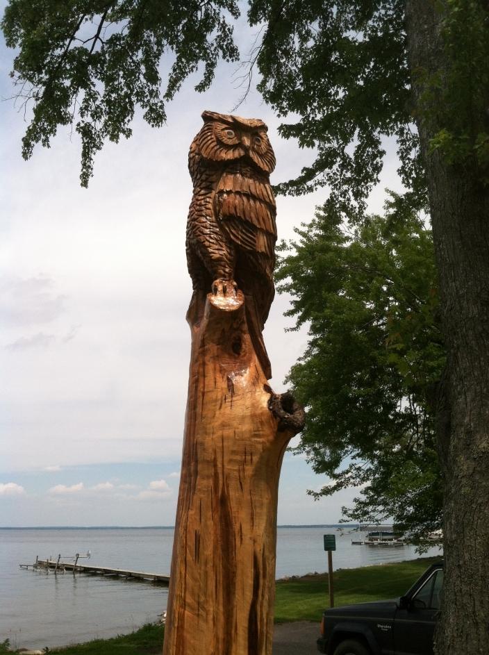 Owl  Houghton Lake Michigan