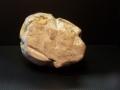 petoskey-stone-4